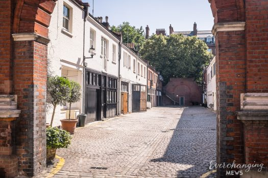 Shafto Mews - Everchanging Mews